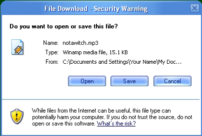 File Download Dialog (Picture Example)